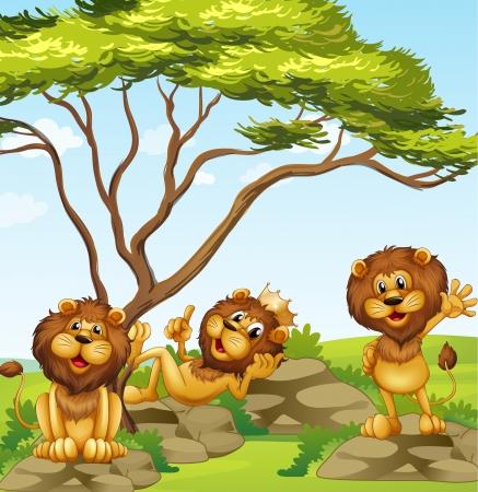 ojos caricatura: Ilustraci�n de un grupo de leones Vectores