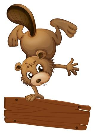 nutria caricatura: Ilustración de un castor y el tablero vacío sobre un fondo blanco Vectores