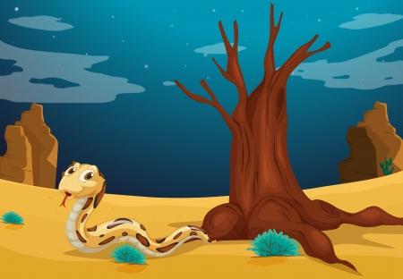 rattle snake: Illustration of a snake at the desert Illustration