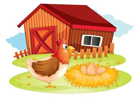 gallina con huevos: Ilustración de una gallina y sus huevos en el patio trasero en un fondo blanco Vectores