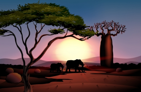 bush babies: Illustration of a sunset at the desert with animals