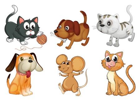 chiot et chaton: Illustration de six animaux diff�rents � quatre pattes sur un fond blanc Illustration