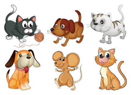 puppy and kitten: Illustration of six different animals with four legs on a white background