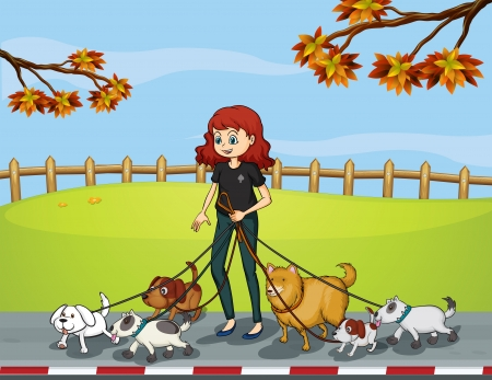 dog walking: Illustration of a lady at the park strolling with her pets