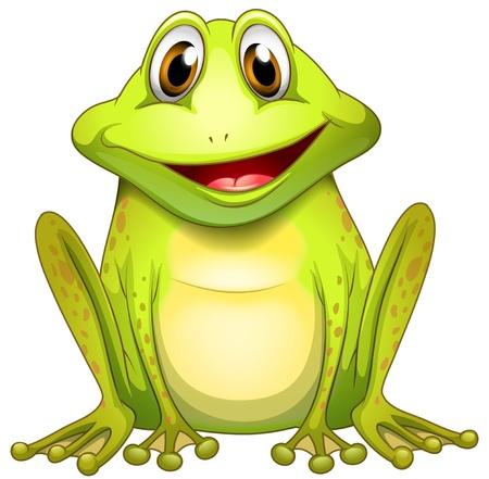 白い背景に笑みを浮かべてカエルのイラスト  イラスト・ベクター素材