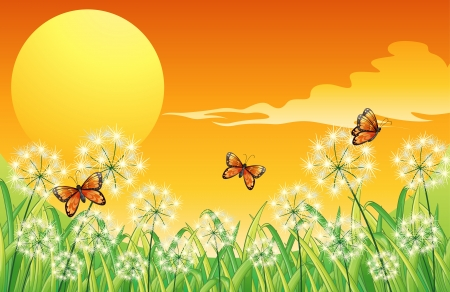 Illustration of a sunset scenery with three orange butterflies Stock Vector - 17927829
