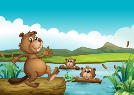 Illustration of beavers playing in the river with woods