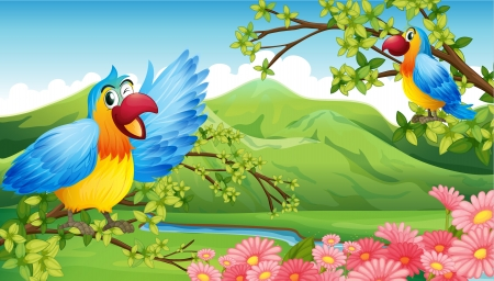 pink hills: Illustration of two colorful parrots in a mountain scenery Illustration