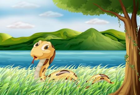Illustration einer Schlange im Gras