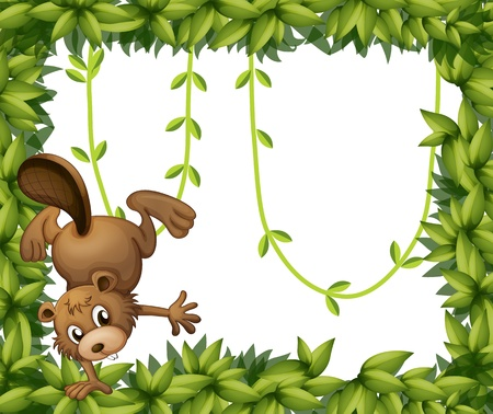 Illustration of a beaver and the green leafy border Vector