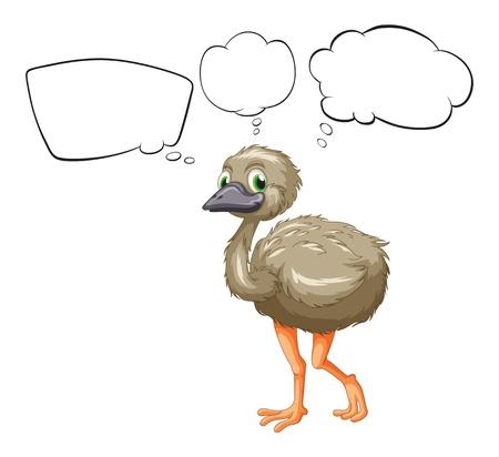 emu: Ilustraci�n de un avestruz peque�o sobre un fondo blanco