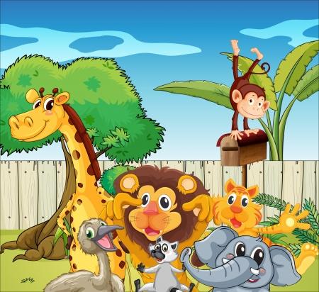 cartoon zoo animals: Illustration of the different kinds of animals Illustration
