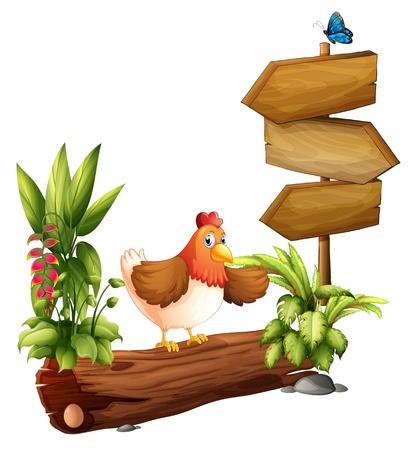 granja avicola: Ilustración de un pollo cerca del tablero de flecha sobre un fondo blanco