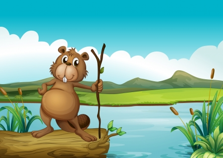 Illustration of a beaver at the river Stock Vector - 18012977