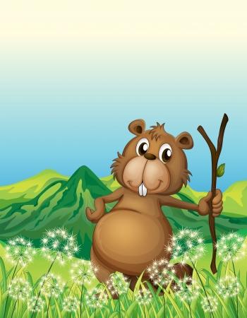 nutria caricatura: Ilustración de un castor, cerca de la hierba