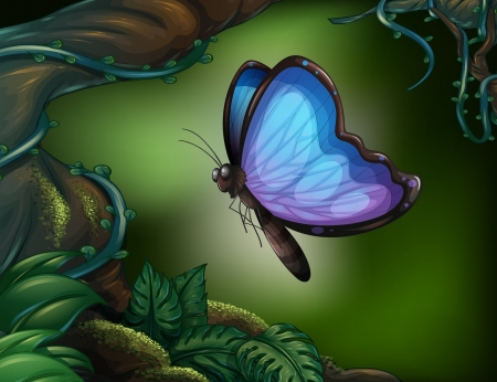 Illustration of a butterfly in the rainforest   Vector