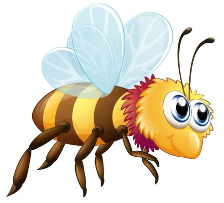 Illustration of a colorful bee on a white background Vector