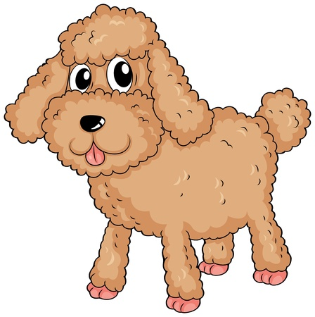 bestfriend: Illustration of a furry pet on a white background Illustration