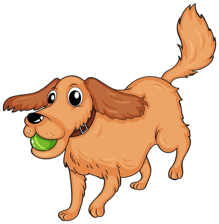 Illustration of a dog playing with the ball on a white background Stock Vector - 18052815