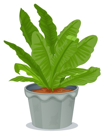 potting soil: Illustration of a plant inside a gray pot on a white background