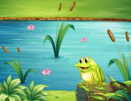 frog illustration: Illustration of a frog at the riverbank