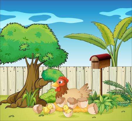 pollitos: Ilustraci�n de una gallina y sus pollitos