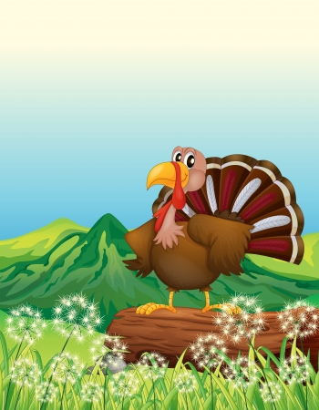 hillside: Illustration of a turkey above a trunk at the hilltop
