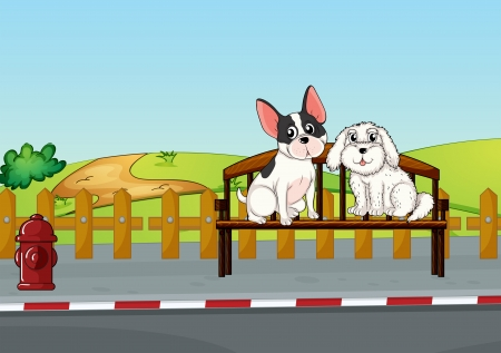 dog park: Illustration of animals sitting at the bench Illustration