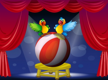 Illustration of two colorful parrots at the stage  イラスト・ベクター素材