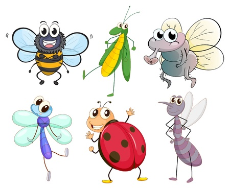 Illustration of the different insects on a white background Stock Vector - 18052831