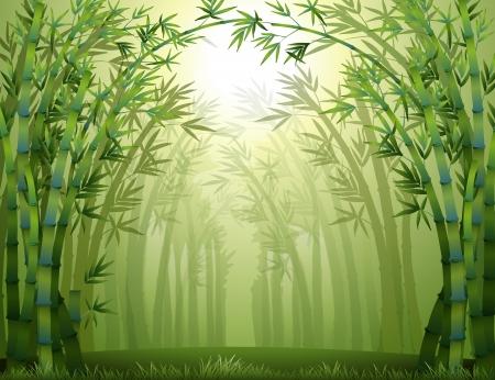 Illustratie van het bamboe bomen in het bos