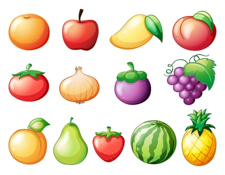 Illustration of the diffrent kinds of fruits on a white background Vector