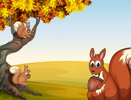 Illustration of the three squirrels with nuts at the big tree Illustration