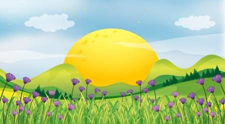 sol naciente: Ilustraci�n de un sol naciente Vectores