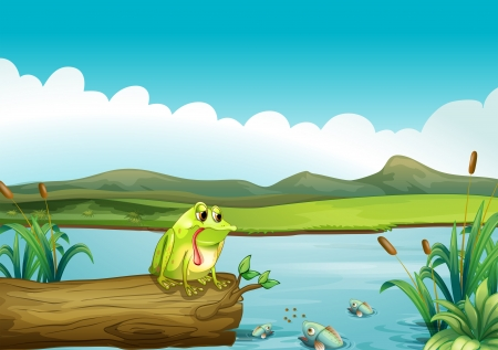fish pond: Illustration of the lonely frog Illustration