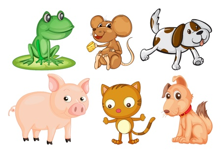 Illustration of the differrent kinds of land animals on a white background Vector