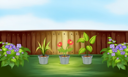 Illustration of the different types of plant inside the wooden fence Stock Vector - 18053232