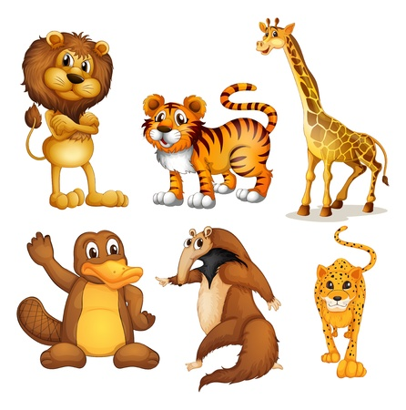 Illustration of the different kinds of land animals on a white background Vector