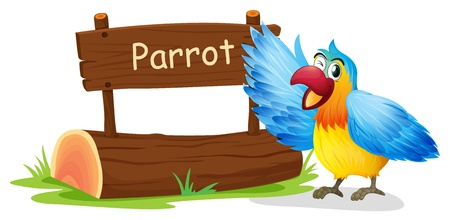 pic: Illustration of a colorful parrot blinking his eye on a white background
