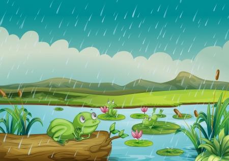 canne: Illustrazione delle tre rane godendo le gocce di pioggia Vettoriali