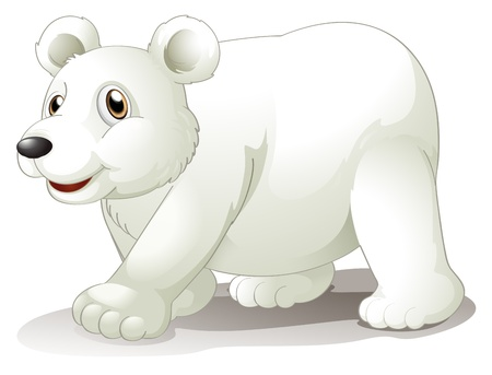Illustration of a big white bear on a white background Vector