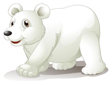 osito caricatura: Ilustraci�n de un gran oso blanco sobre un fondo blanco Vectores
