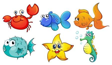 Illustrazione delle diverse creature marine su uno sfondo bianco