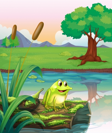 Illustration of a frog above a trunk with algae Stock Vector - 18158547