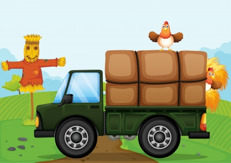 cartoon farmer: Illustration of a chicken and the scarecrow
