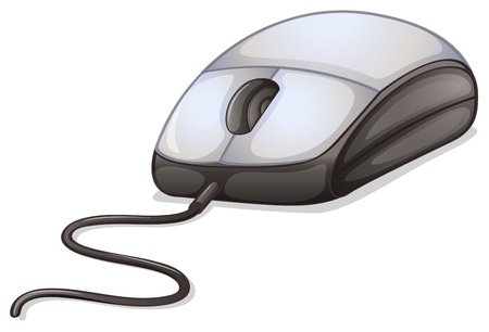 computer peripheral: Illustration of a computer mouse on a white background