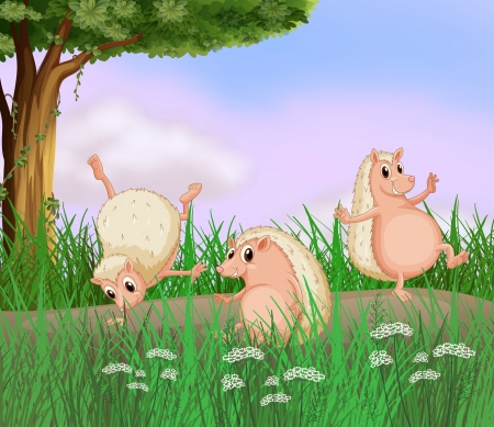 playing field: Illustration of the three molehogs playing