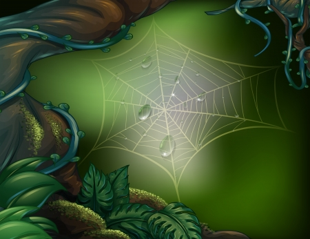 cartoon forest: Illustration of a spider web in a rainforest Illustration