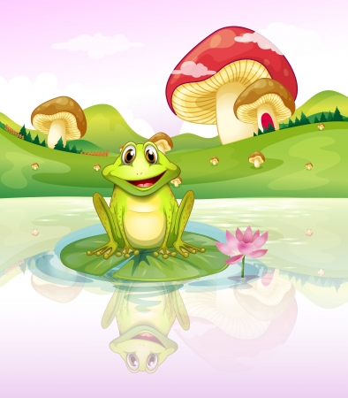 giant mushroom: Illustration of a frog watching his reflection from the water