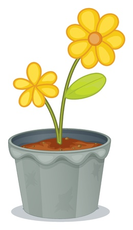 picutre: Illustration of a gray pot with a flower on a white background Illustration